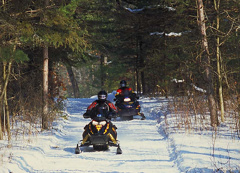 Snowmobilers using the Northumberland County Forest