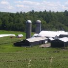 Farm near Campbellford